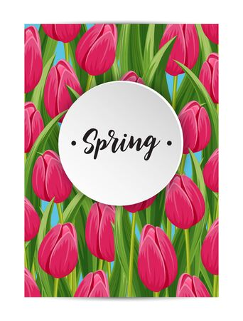 beautyful: Spring banner with pink blooming tulip flower and copy space vector illustration. Floral decorated spring design for holiday, seasonal celebration greeting card template, nature feast congratulation Illustration