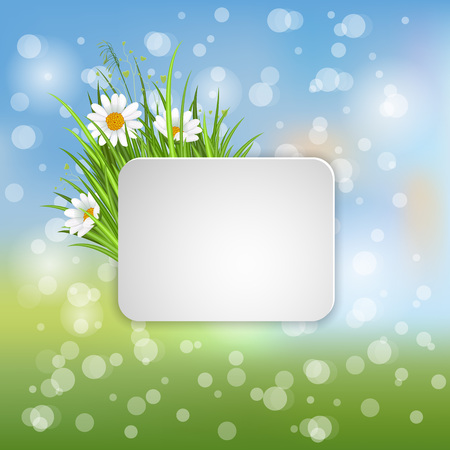 beautyful: Spring banner with blooming chamomile flower and green grass on blurred background vector illustration. Floral decorated spring design for holiday, romantic celebration card template with copy space Illustration