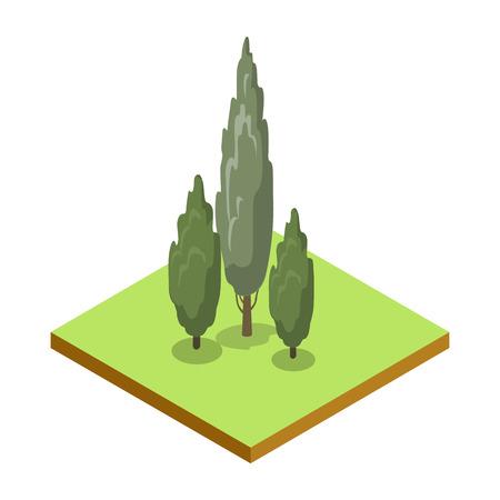 Icône 3D de peuplier isométrique. Illustration vectorielle de parc public et herbe verte. Élément de carte de nature pour la conception de paysage de parcs d'été.