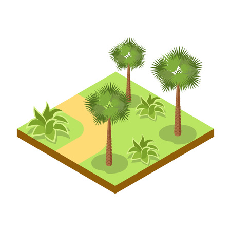 Park alley with bushes and palm trees isometric 3D icon. Decorative plant and green grass vector illustration. Nature map element for summer parkland landscape design.
