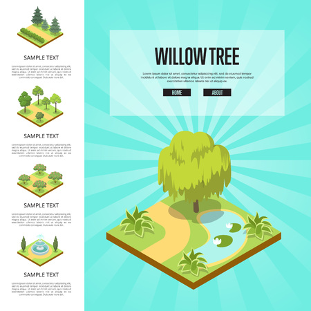 Natural parkland landscape with willow tree isometric infographics. Public park zone decoration, fields with decorative plants. Green alley with grass, trees, bushes and fountain vector illustration.