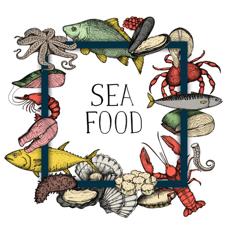 Seafood vintage hand drawn. Banner with oyster, crab, scallop, shrimp, octopus and fish sketches for restaurant menu or market advertising. Natural healthy food design.