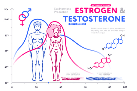Colorful diagram showing male and female hormones.