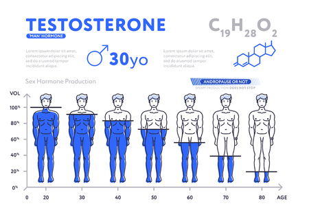 Decreasing chart of male hormone vector illustration