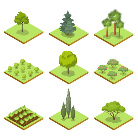 Public park decorative trees and plants isometric 3D set. Nature map elements for summer parkland landscape design. Lawns with oak, pine, fir, bush, flowers and green grass illustration. Stockfoto