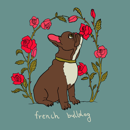 French bulldog with roses cute background  Illustration