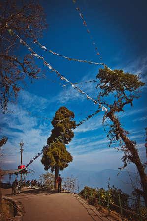 darjeeling: A view in Darjeeling with prayer flags