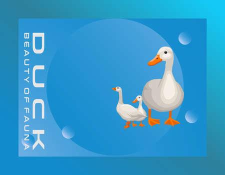 Abstract duck animal background design for magazine website magazine advertisement wallpaper business business abstract poster background