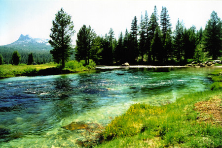 Meadow landscape with river Stock Photo