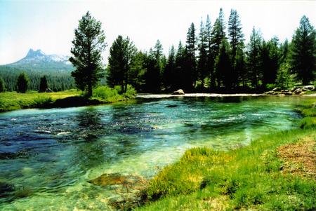 Meadow landscape with river Zdjęcie Seryjne