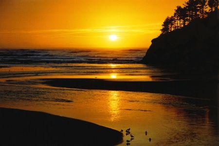 Pacific Northwest sunset Stock fotó - 3945889