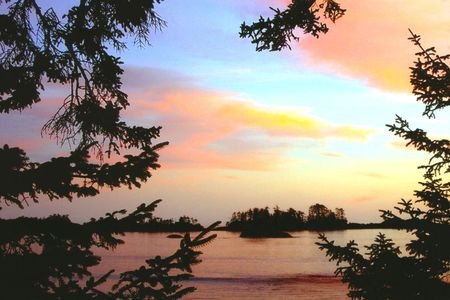 Tofino Canada Pink Sunset
