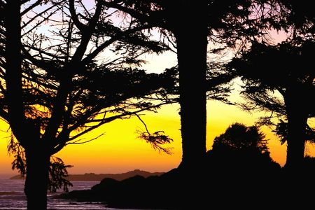 Brilliant Tofino British Columbia Sunset