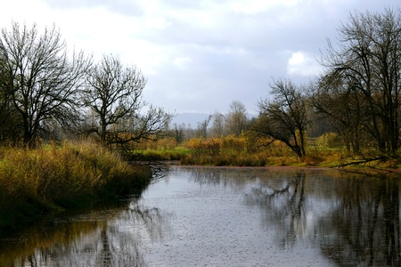 Wetlands Creek in Autumn photo
