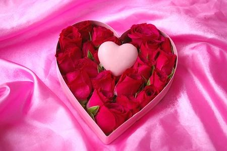 Sec brosse Valentine coeur Candy et Roses sur Satin