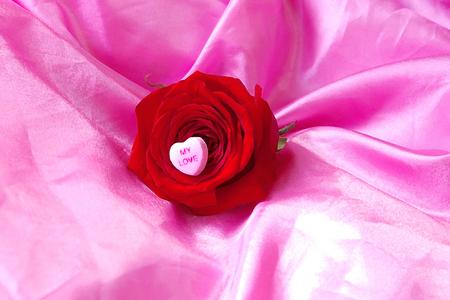 Dry Brush Rose on Pink Satin