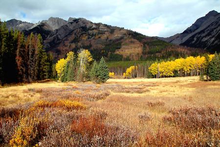Canadian Rocky Scenery in Autumn Фото со стока