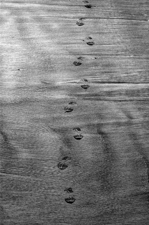 pilgramige: Path of footprint on the beach at the ned of the summer Stock Photo