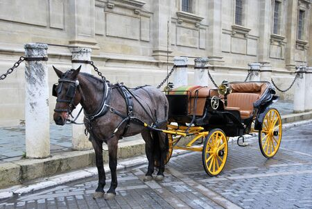horse carriage: Traditional horse carriage in Seville. Spain. Touristic transport Stock Photo