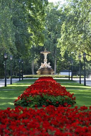 Garden with geraniums in Retiro park. Madrid, Spain photo