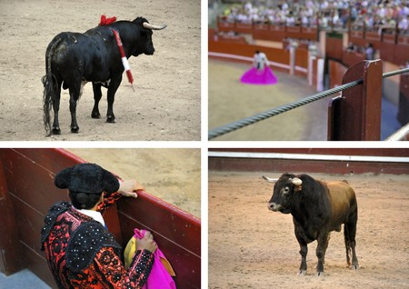 bullfighters: Collage made from various pics of bulls and bullfighters. Stock Photo
