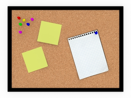 noteboard: A noteboard made of cork with some pins and blank papers