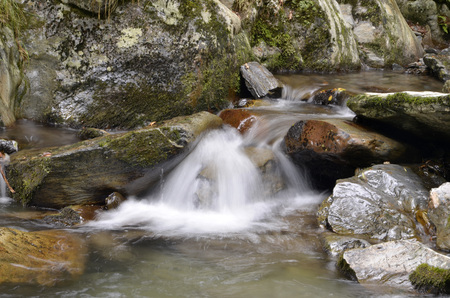 toran: Water flowing in an stream  Sant Joan de Toran, Valle de Aran, Lleida, Catalonia, Spain Stock Photo