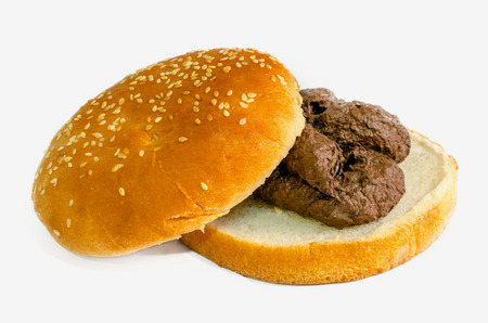 faeces: A shit burger. Fast food is a garbage concept