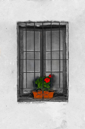 Picture of an old window with a geranium. Desaturated effect in the window