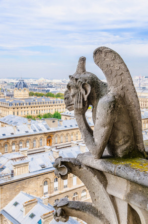 privileged: A gargoyle observes the city of Paris from its privileged position