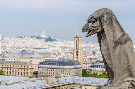gargoyle: One of the gargoyles in Notre Dame Cathedral. Paris, France