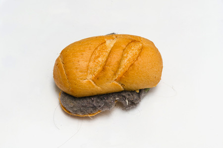 allergic foods: Disgusting food. Bread, dust and hair sandwich