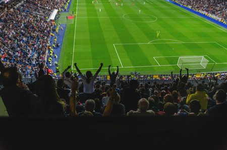 A goal is celebrated for the supporters of a team in a soccer stadium