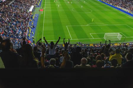 multitud de gente: Una meta es célebre por los partidarios de un equipo en un estadio de fútbol