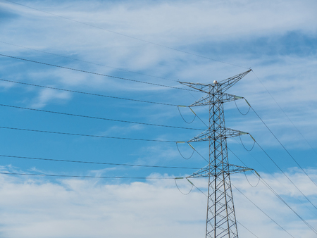 conductor electricity: Electricity tower. Industrial structure to supply electricity