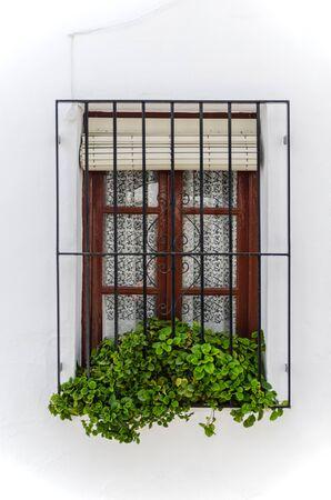frigiliana: Wooden window with a grille in frigiliana, malaga, andalusia, spain