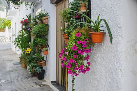 flowerpots: Tupical andalusian house entrance with plantpots in Capileira, Alpujarras, Granada, Andalusia, Spain