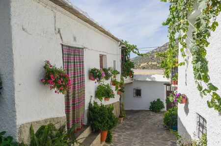 solanaceae: Typical andalusian street in Bubion, Granada, Spain