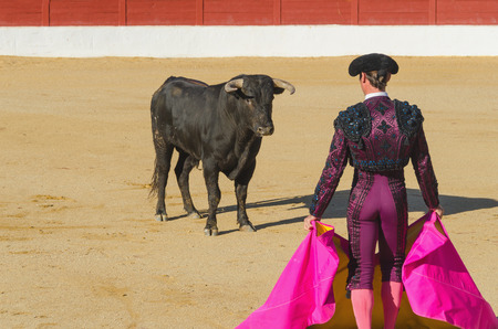 A bullfighter in front of the bull in an spanish bullfighting Stock Photo