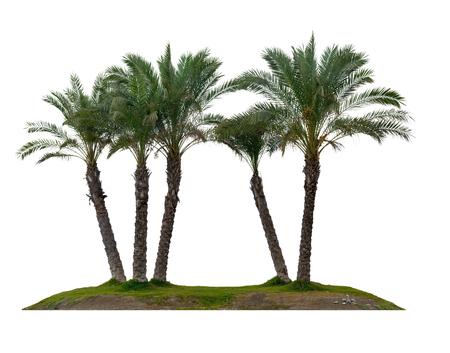 Onbewoond eiland geïsoleerd op een witte achtergrond Stockfoto
