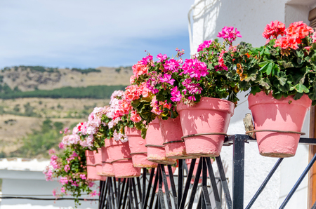Algunos plantpots geranio en un balcón andaluz. Capileira, Granada, España Foto de archivo - 47676723
