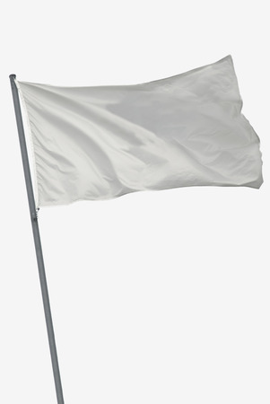 Blank flag isolated in white waving on the wind