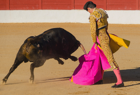 bull fight: A bullfighter giving a pass to the bull with his cape. The matador confronts the bull with the capote Stock Photo