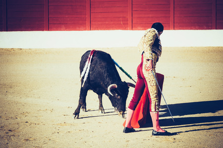 capote: A bullfighter giving a pass to the bull with his cape. The matador confronts the bull with the capote Stock Photo