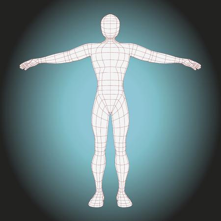 figura humana: el cuerpo del hombre estructura metálica futurista. ilustración vectorial del cuerpo humano hecho con líneas Vectores
