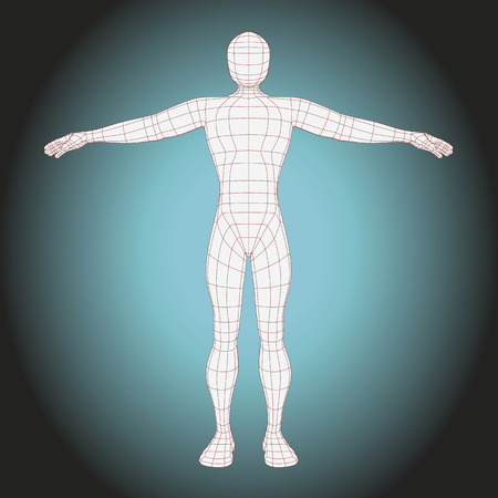 futuristic man: futuristic wireframe man body. vector illustration of the human body made with lines