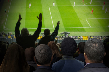 football fan: crowd of soccer fans looking the match. Some of them have complains with the referee. Blurred background. 3d render. 3d illustration