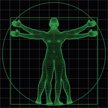 Wireframe vitruvian man as imitation of leonardo one. vector illustration