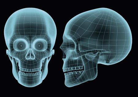 halloween wireframe human skull in blue over a black background. Model seems to be semi transparent as if it was an hologram or radiography. futuristic vector illustration