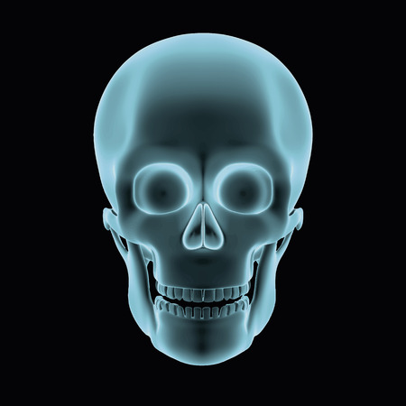 halloween human skull in blue over a black background. Model seems to be semi transparent as if it was an hologram or radiography. vector illustration